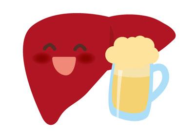 肝臓とお酒