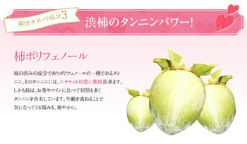 柿ポリフェノール