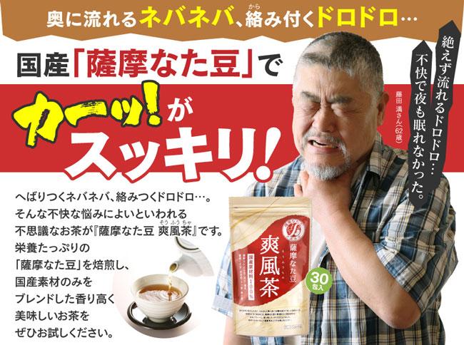 薩摩なた豆爽風茶